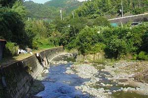 水無瀬川・尺代アマゴ・マス釣り場写真