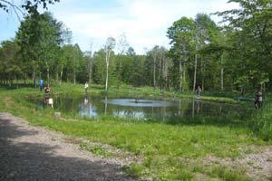 士幌フィシングパークえさ釣り池写真