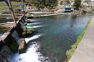 須川フィッシングパーク水量豊富さと透明感!写真