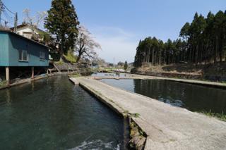 須川フィッシングパーク餌つり池写真