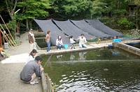 FF須谷川写真