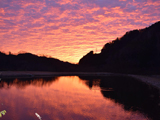 Fishing Bums WADONAWADONAの朝