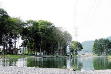 フィッシングパークX-ZONEバス池写真