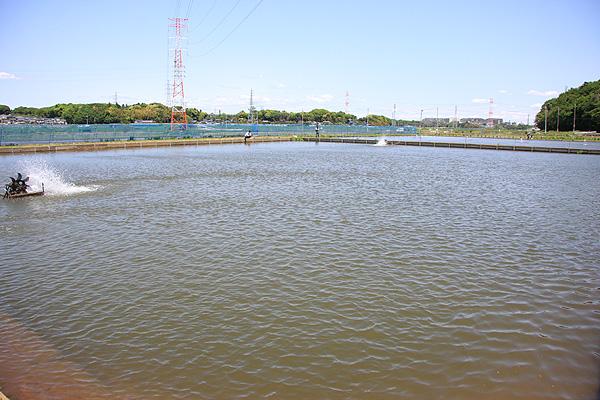 フィッシングエリア座間養魚場受付側より写真