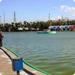 さいたま水上公園