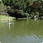 世界遺産登録で話題の富岡市から下仁田フィッシングパーク