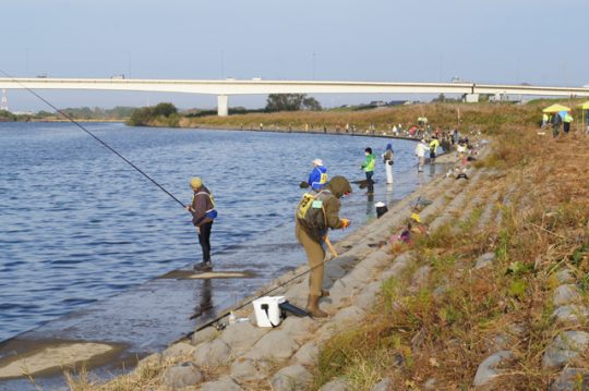 平成28年・久慈川サケ資源有効利用調査の様子